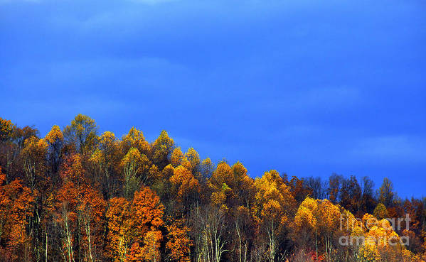 Autumn Art Print featuring the photograph Stormy Sky Last Fall Color by Thomas R Fletcher