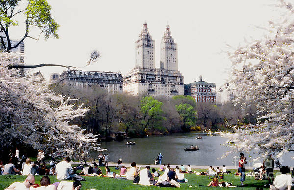 Abstract Art Print featuring the photograph The Dakota From Central Park by Linda Parker
