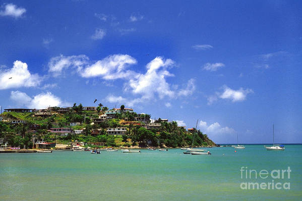 Puerto Rico Art Print featuring the photograph Naguabo Shoreline by Thomas R Fletcher
