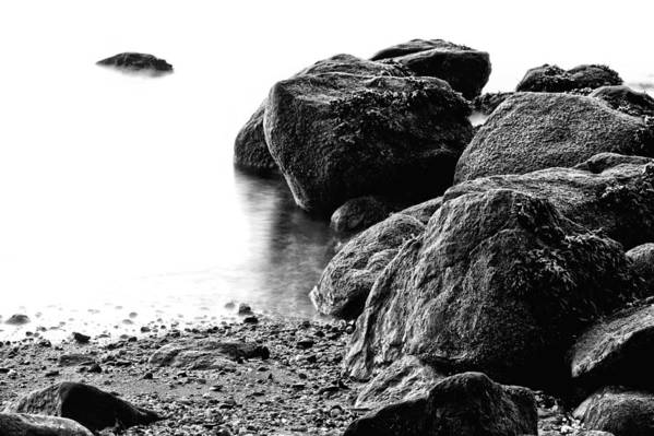 Stepping Stones Park Art Print featuring the photograph Into The Light by JC Findley