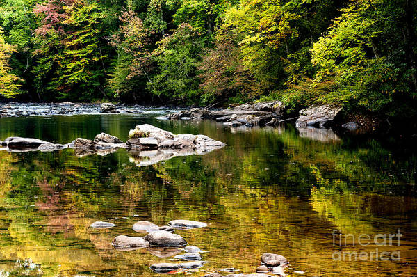 Williams River Art Print featuring the photograph Williams River Autumn by Thomas R Fletcher