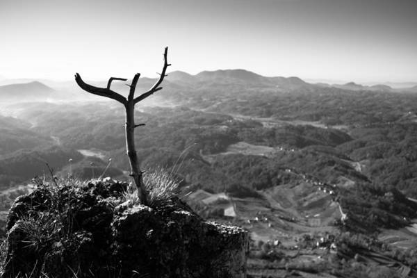 Landscapes Print featuring the photograph Guardian by Davorin Mance
