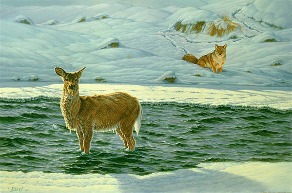 Wildlife Art Print featuring the painting Refuge by Paul Krapf
