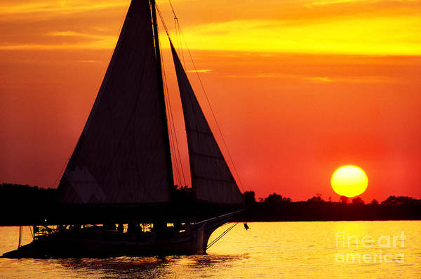 Skipjack Art Print featuring the photograph Skipjack At Sunset by Thomas R Fletcher