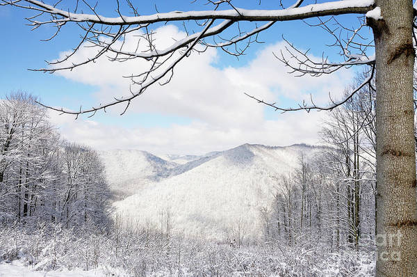 West Virginia Art Print featuring the photograph Mcguire Mountain Overlook by Thomas R Fletcher