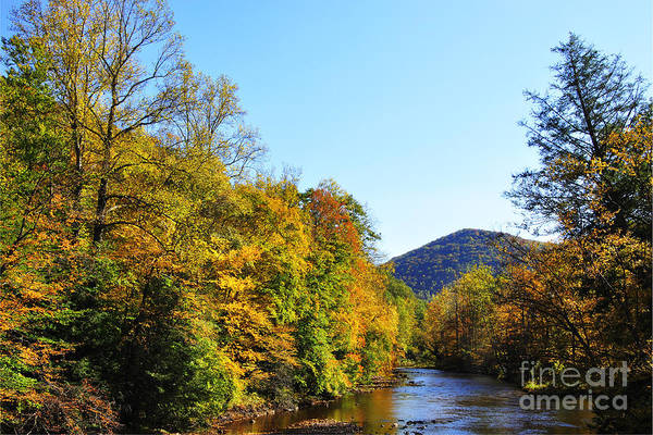 Williams River Art Print featuring the photograph Autumn Williams River by Thomas R Fletcher