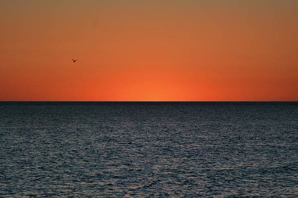 Jai Johnson Art Print featuring the photograph Cape San Blas Sunset by Jai Johnson