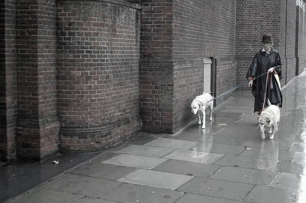 Jez C Self Art Print featuring the photograph Doggie Strolling 1 by Jez C Self
