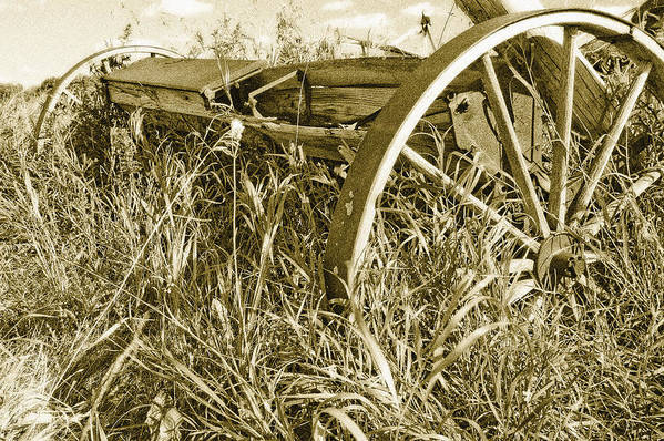 Sepia Art Print featuring the photograph Farm Equipment At Rest by Linda McRae