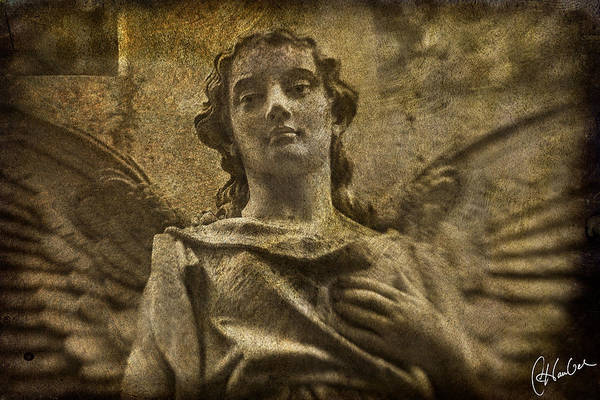 Angel Art Print featuring the photograph Paragon by Christine Hauber