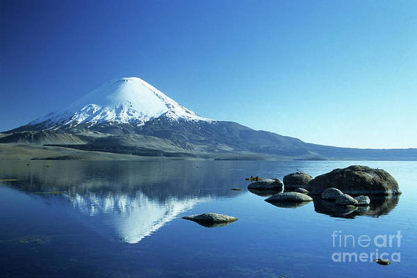 Chile Art Print featuring the photograph Parinacota Volcano Reflections Chile by James Brunker