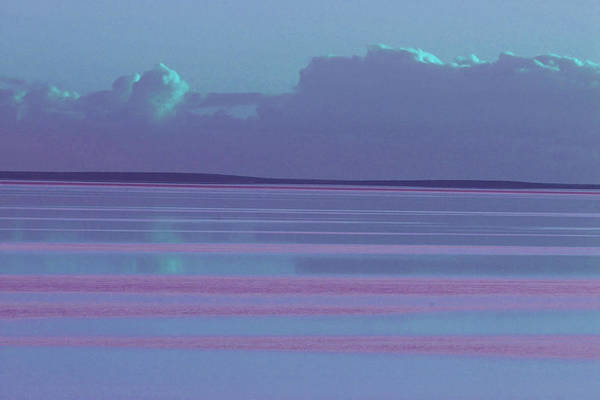 Sunset Art Print featuring the photograph Pastel Sunset Sea Lilac by Tony Brown