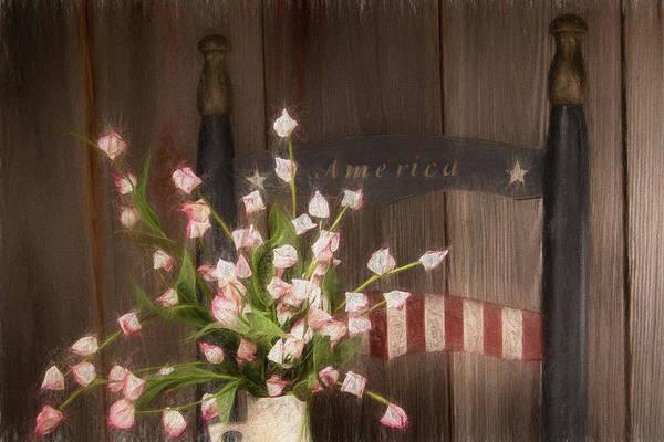 America Art Print featuring the photograph Patriotic Seating by Tom Mc Nemar