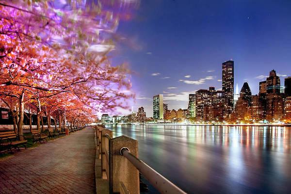 New York City Art Print featuring the photograph Romantic Blooms by Az Jackson