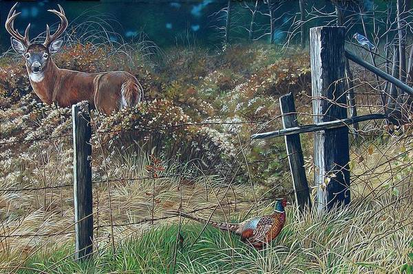 Whitetail Art Print featuring the painting The Neighbor's Gate by Bethany Caskey