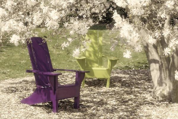Magnolia Art Print featuring the photograph Under The Magnolia Tree by Tom Mc Nemar