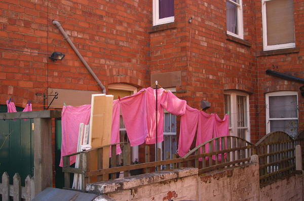 Jez C Self Art Print featuring the photograph Wash Day Pinks by Jez C Self