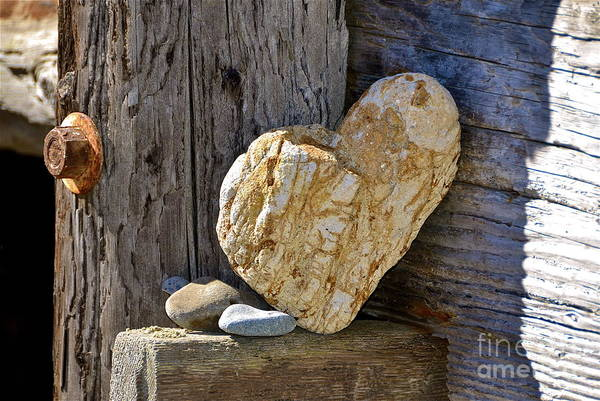 Beach Art Print featuring the photograph Love Rocks by Amy Fearn