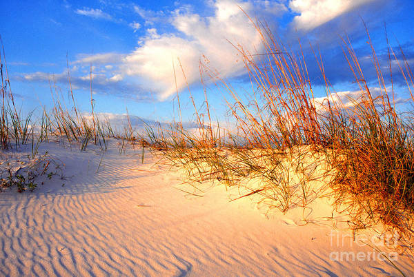 Beach Art Print featuring the photograph Sand Dune And Sea Oats At Sunset by Thomas R Fletcher