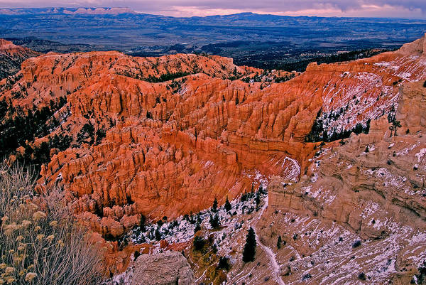 Landscape Art Print featuring the photograph Bryce Canyon N.p. by Larry Gohl