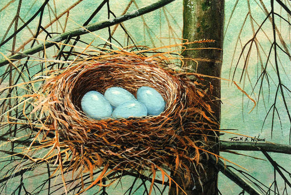 Wildlife Art Print featuring the painting Blue Eggs In Nest by Frank Wilson