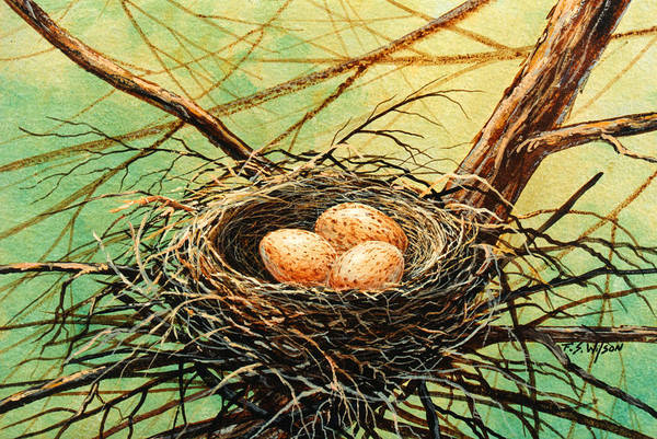 Wildlife Art Print featuring the painting Brown Speckled Eggs by Frank Wilson