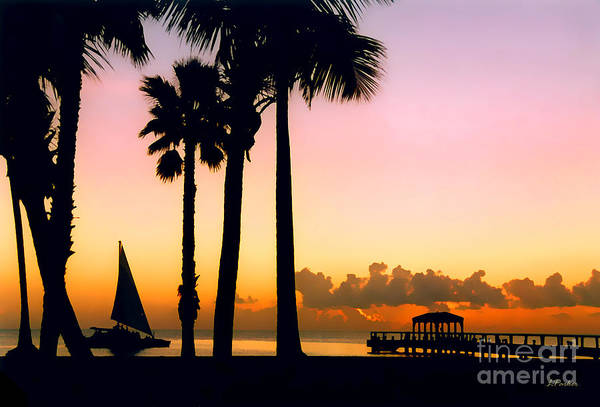 Impressionism Art Print featuring the photograph Paradise In Nevis by Linda Parker