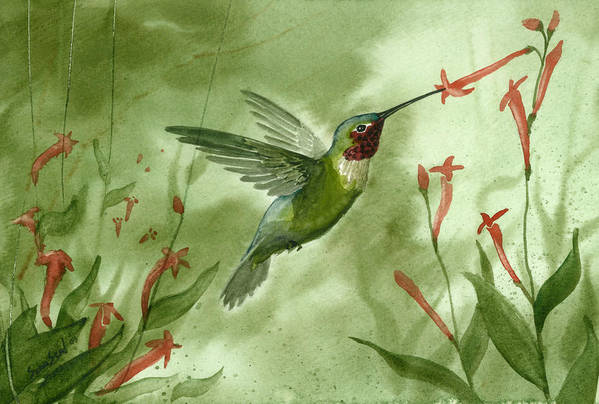 Birds Art Print featuring the painting Ruby Throated Hummingbird by Sean Seal