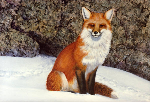 Wildlife Art Print featuring the painting The Wait Red Fox by Frank Wilson