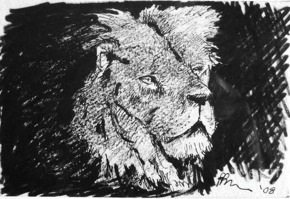 Male Lion Portrait Art Print featuring the drawing Male Lion Portrait by Paul Miller