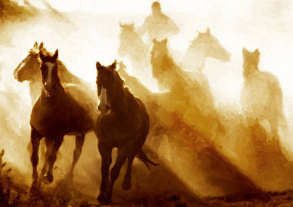 Horses Art Print featuring the photograph Round Up by Nick Sokoloff