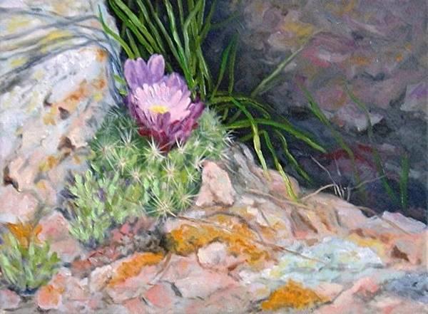 Hedgehog Art Print featuring the painting Hedgehog Cacti by Debra Mickelson