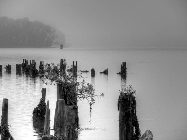 Pier Art Print featuring the photograph Potomac Fog by JC Findley