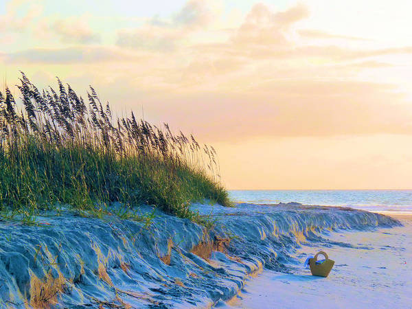 Atlantic Art Print featuring the photograph The Basket by JC Findley