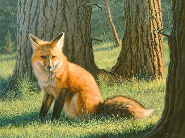 Wildlife Art Print featuring the painting Young Red by Paul Krapf