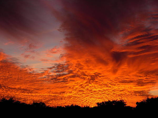 Sky Art Print featuring the photograph Fire In The Sky by Amanda Vouglas