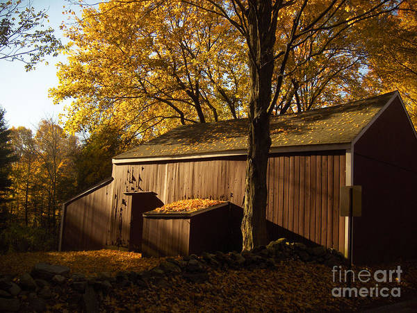 Barn Art Print featuring the photograph Red Barn At Dawn by Joshua Francia