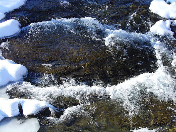 Greene County Greeting Card Art Print featuring the photograph A Chilly Froth Circles A Resting Stone by Terrance DePietro