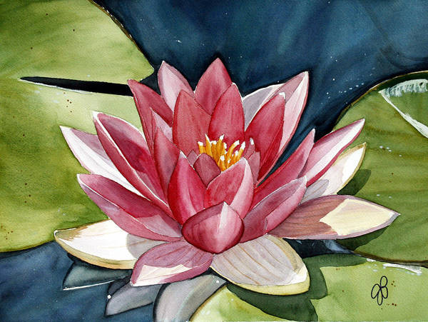 Water Lilly Flower Art Print featuring the painting Lilly Pond by Julie Pflanzer