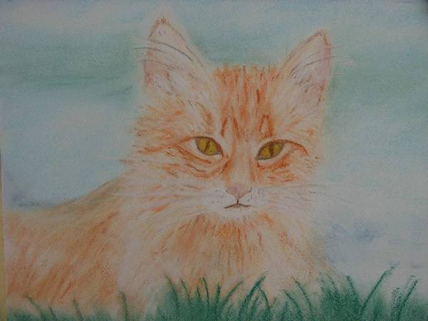 Kitty Art Print featuring the pastel Ready For The Pounce by Shiana Canatella