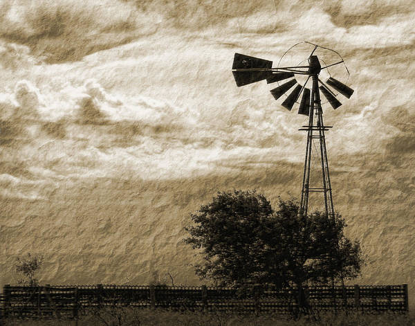 Sepia Print featuring the photograph Wind Blown by Tony Grider