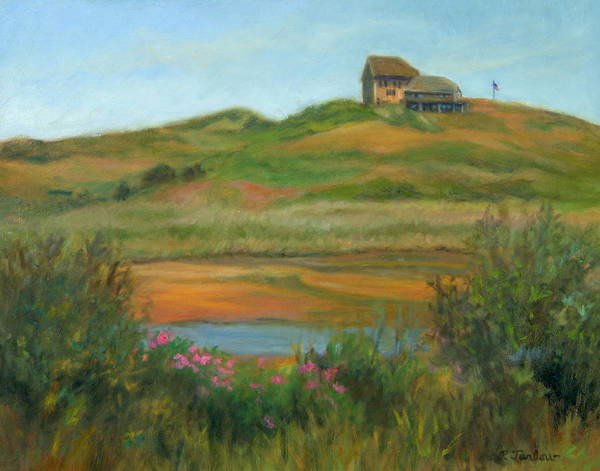Landscape Art Print featuring the painting Hilltop Houses Cape Cod by Phyllis Tarlow