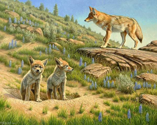 Wildlife Art Print featuring the painting Babysitter - Coyotes by Paul Krapf
