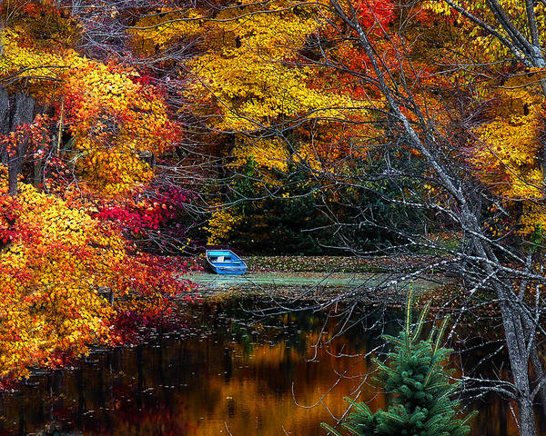 Fall Art Print featuring the photograph Fall Pond And Boat by Tom Mc Nemar