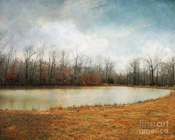 Autumn Art Print featuring the photograph Goodbye Autumn by Jai Johnson