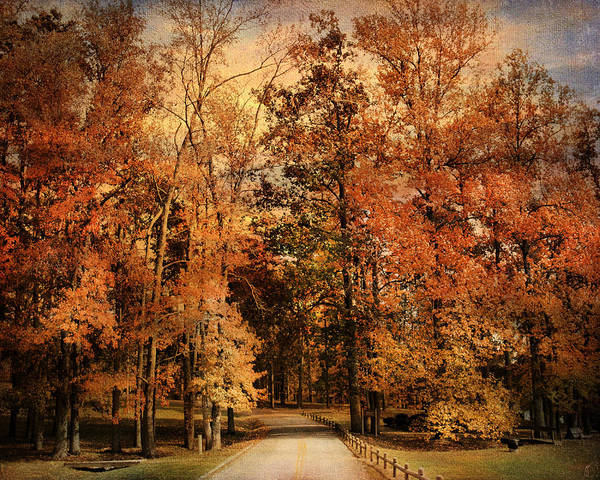 Autumn Art Print featuring the photograph Autumn's Entrance by Jai Johnson