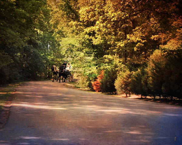 Autumn Art Print featuring the photograph Ride At Timbers Farm by Jai Johnson