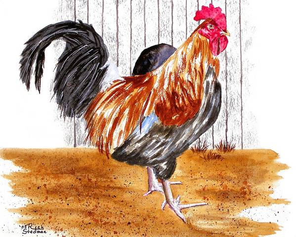 Rooster Art Print featuring the painting King Of The Barnyard by Rich Stedman