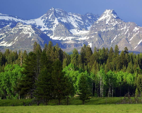 Mountains Art Print featuring the photograph Peaks by Marty Koch
