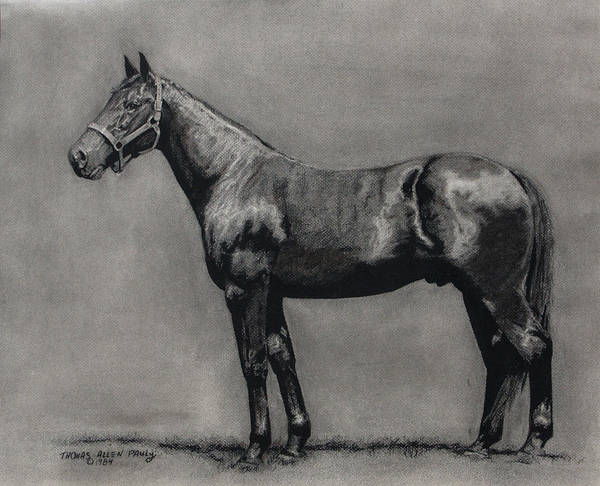 Derby Art Print featuring the painting The Standardbred by Thomas Allen Pauly